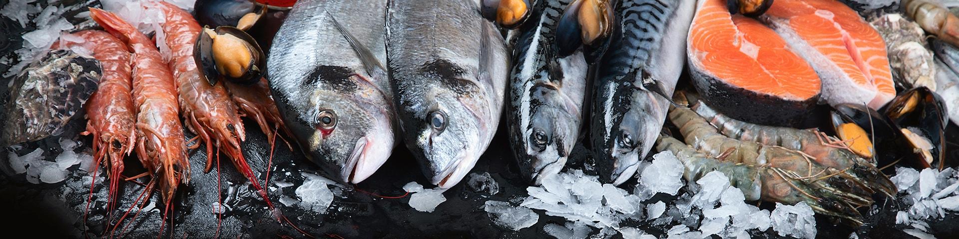 Fisk och skaldjur uppradat